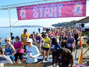 runners at start banner